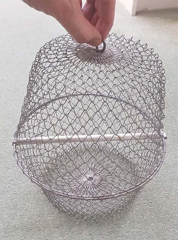 Vogelkooitje productie